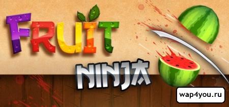 Fruit Ninja полная версия