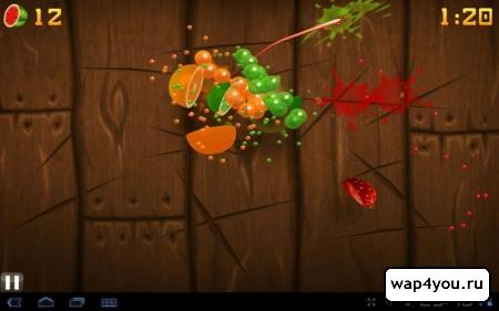 полная версия Fruit Ninja