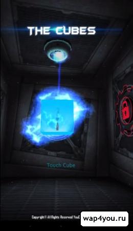 Обложка The Cubes