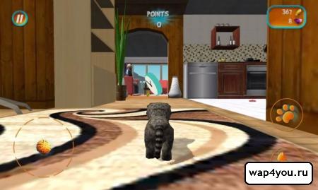 Скриншот Cat Simulator