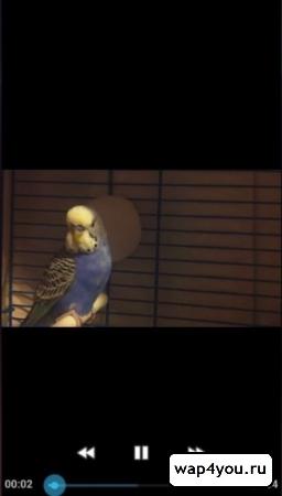 Скриншот Вконтакте Музыка и Видео