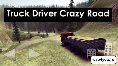 Обложка Truck Driver Crazy Road