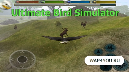 Скачать Ultimate Bird Simulator