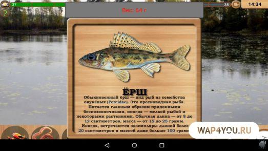 реальная рыбалка толстолобик волга