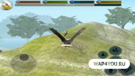 Ultimate Bird Simulator на Андроид